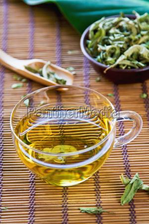 herbata verveine lub verbena tea