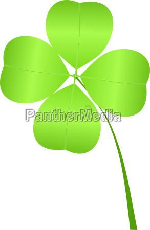 four leaf clover for st patricks