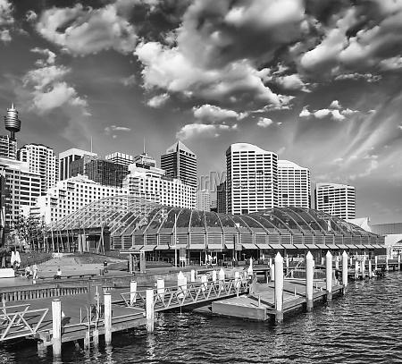 beautiful skyline of sydney with city