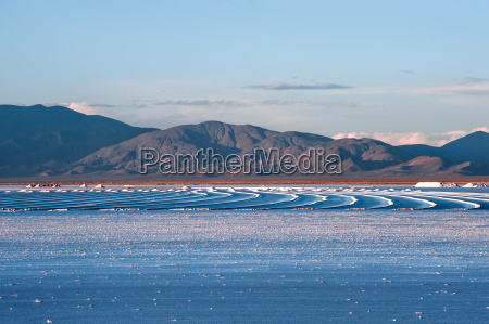 niebieski sol solic pustynia przemysl bran