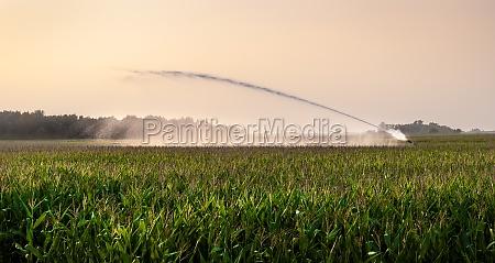 gospodarstwo rolnictwo architektura pole austria kukurydza