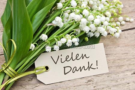 tablica lisc kwiat kwiatek zawod roslina