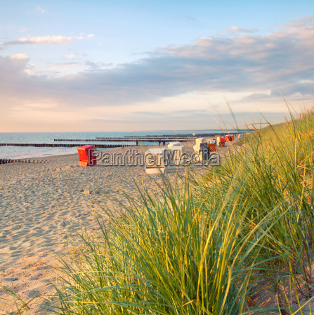 krzesla na plazy w evening light