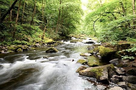 bode rzeka w parku narodowym harz
