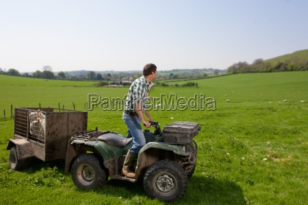 shepherd on tractor looking over sheep
