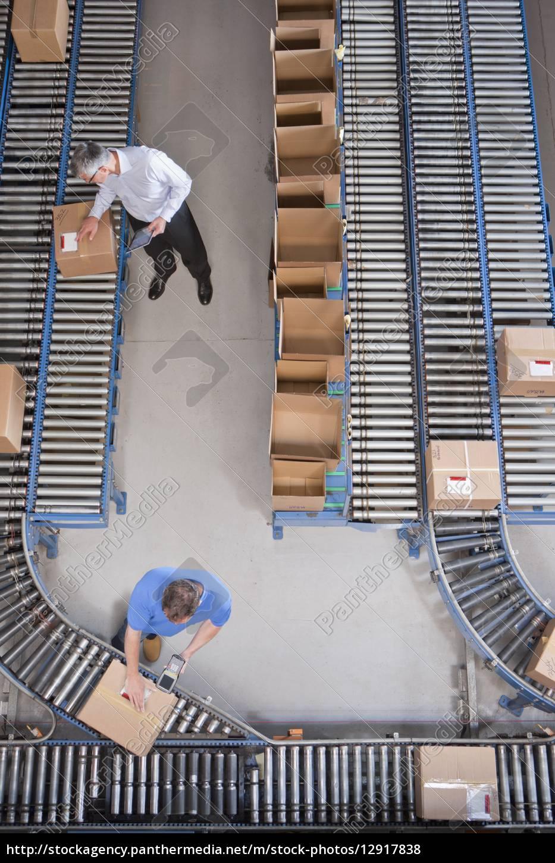 pracownicy, pakują, pudełka, na, przenośnikach, taśmowych - 12917838