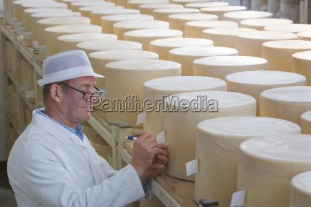 inspektor kontroli mlodych kola ser cheddar