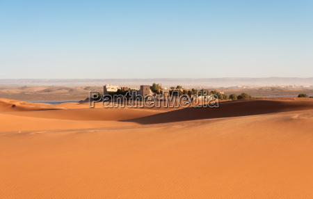 oaza na saharze maroko afryka