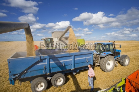 farmer standing next to harvester