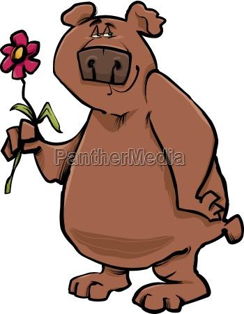 bear z kwiatem kreskowki