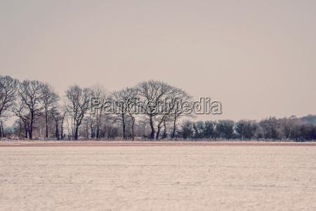 zima w tonacji fioletowej landcapeobraz