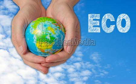 eco ecology