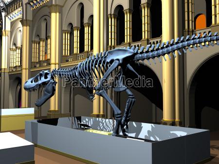 brytyjskie muzeum historii naturalnej z saurer