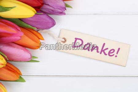 dzieki tulipany kwiaty