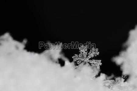 piekny jasny krysztal sniegu