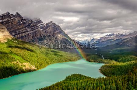 sceniczny widok gorski peyto jeziorna dolina