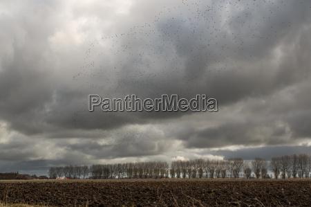 unwetter ostfriesland raincloud firmament niebo sklepienie