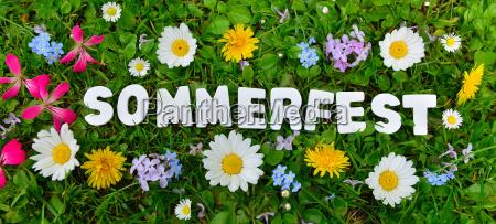 lato partyjny tekst na kwiat lace