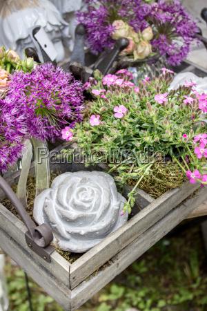 lisc ogrod ogrodek kwiat kwiatek zawod