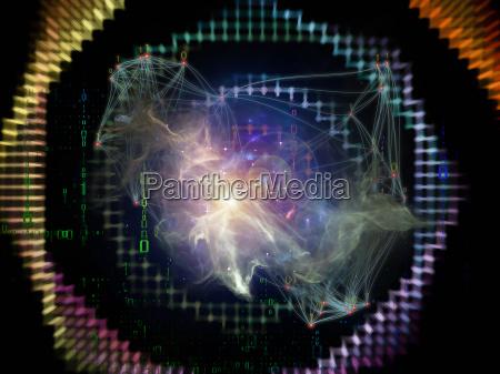 zycie wewnetrzne sieci