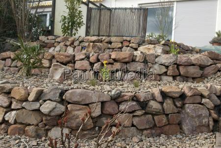 ogrod ogrodek kamien pestka kwiat kwiatek