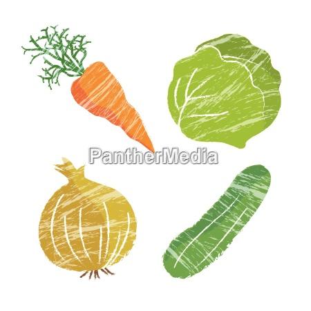 ilustracja warzywna