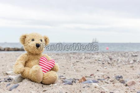 a teddy bear with my heart