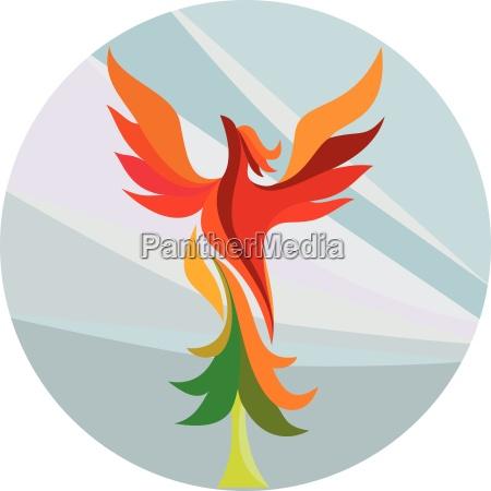 phoenix powstania nagrywania drzewa kolo retro
