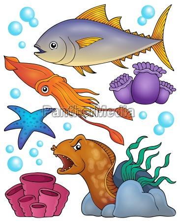 ocean fauna topic set 2