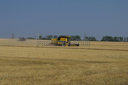 gospodarstwo rolnictwo architektura pole pszenica spielfeld