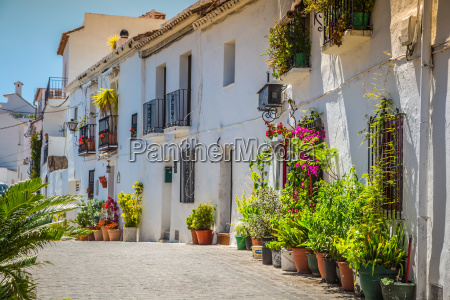 picturesque street of mijas with flower
