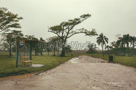 dworzec stacja jazda podrozowanie drzewo zatrzymac