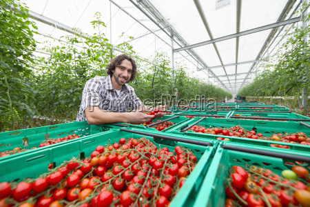 portrait confident grower inspecting ripe red