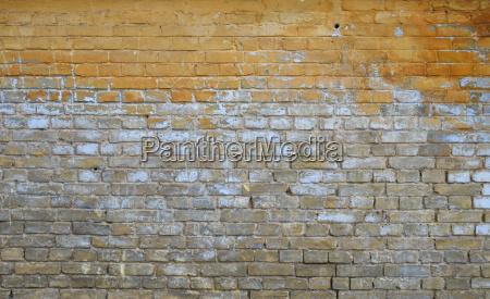 kolor brazowy brazowe brunetka winobranie mur