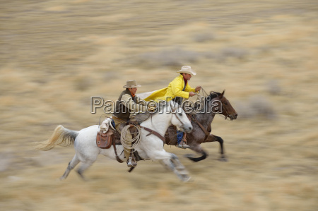 blurred motion of cowboys on horses