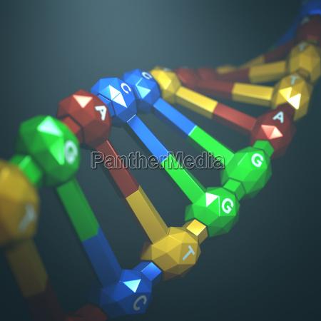 inzynieria genetyczna dna
