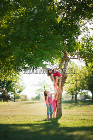 3 young girls playing under tree