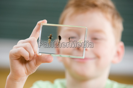 boy with tadpole stages in glass