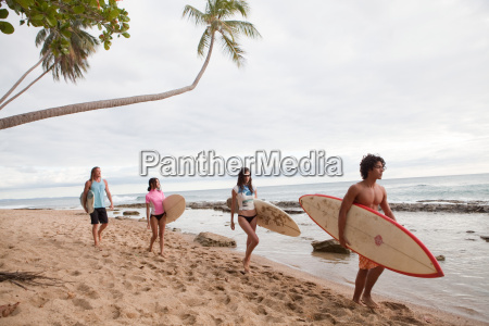 four young friends carrying surfboards on