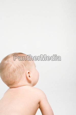 rear view of a baby boy