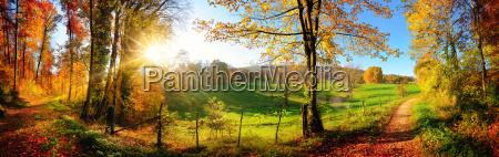 czarujacy krajobraz jesienia sloneczna panorama wsi