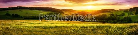kwitnaca laka o zachodzie slonca panorama