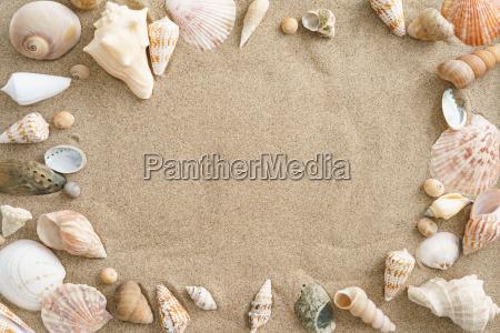 malze w piasku