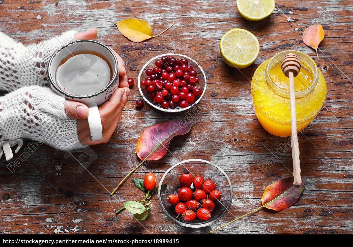 środek, od, jagód, i, miodu - 18989415