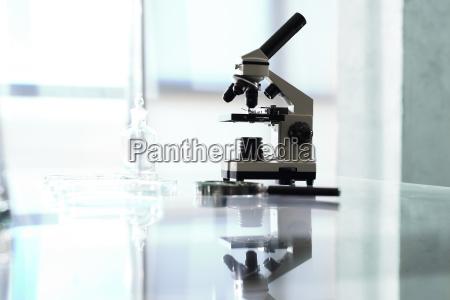 pracownia biotechnologiczna mikroskop