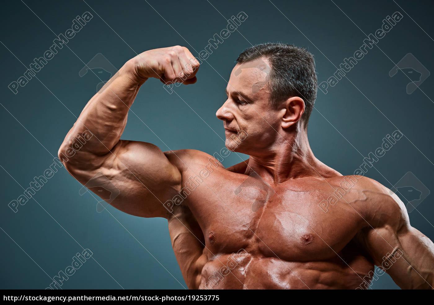 torso, of, attractive, male, body, builder - 19253775