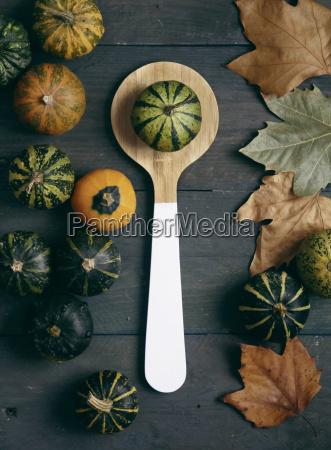 still life umowa jesienny zycie uklad