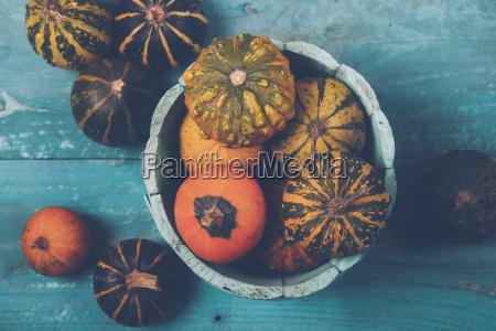 still life kolor jesienny warzywo malowanie
