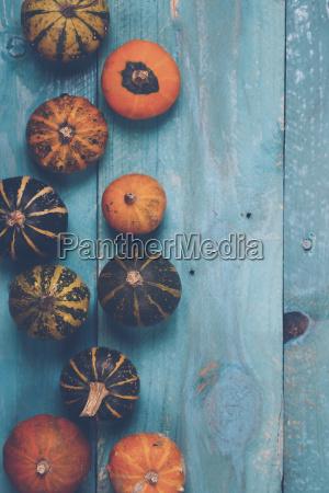 still life umowa kolor jesienny malowanie