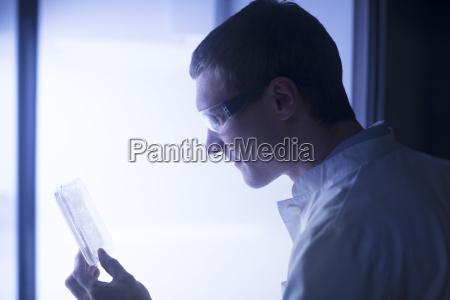 lab technician examining sample